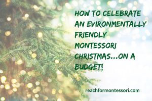 Environmentally friendly Christmas Pinterest