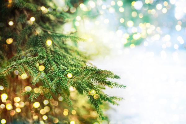 An Environmentally Friendly Montessori Christmas: close up of Christmas tree.