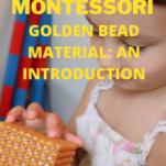montessori golden bead material pinterest image.