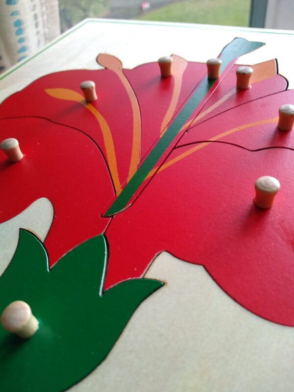 knobbed puzzles in Montessori help with writing before reading