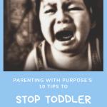 Toddler tantrums and meltdowns tips pinterest image.