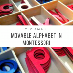 the small Movable Alphabet in Montessori pinterest image.