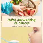 baby led weaning vs purees pinterest image.