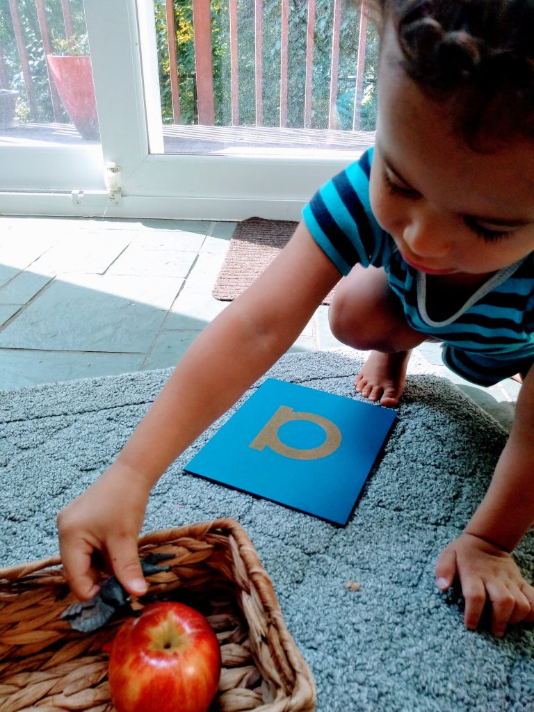 Young child playing Montessori sound games with apple and sandpaper letter.