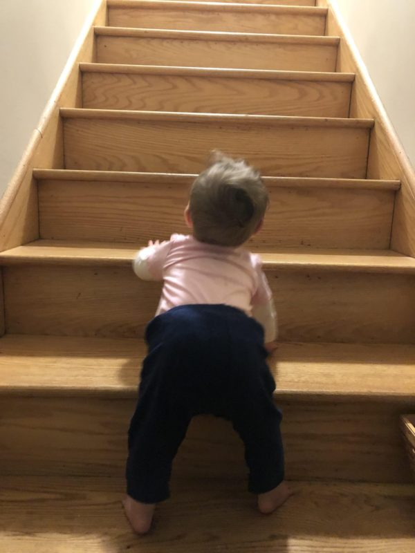baby climbing stairs during sensitive periods for gross motor development and movement.