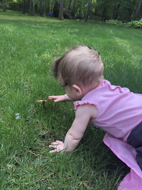 gross motor development in grass