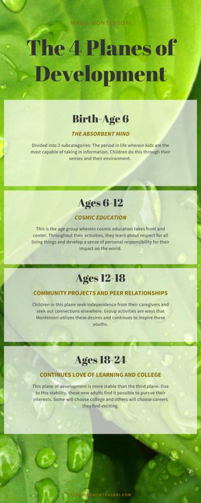planes of development infographic