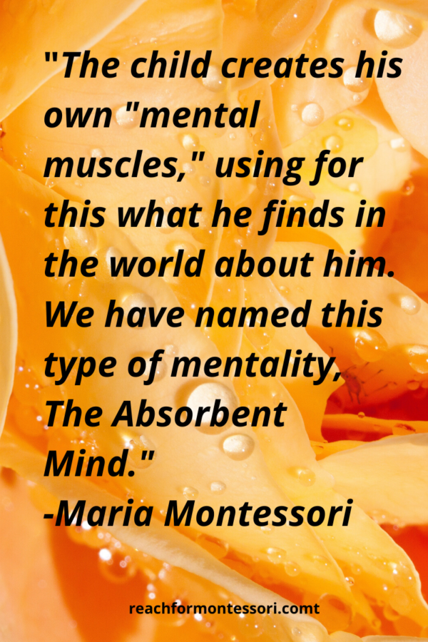 Absorbent Mind Quote by Maria Montessori
