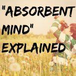 Absorbent Mind Pinterest graphic