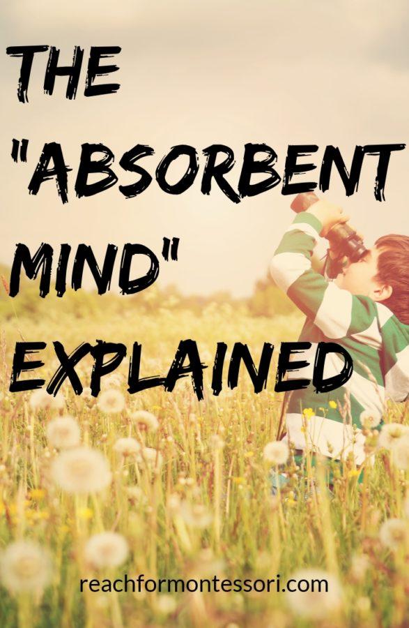 Absorbent Mind Pinterst graphic