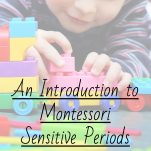 """An Introduction to Montessori Sensitive Periods"" pinterest image."