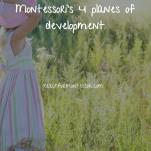 Montessori planes of development pinterest graphic.