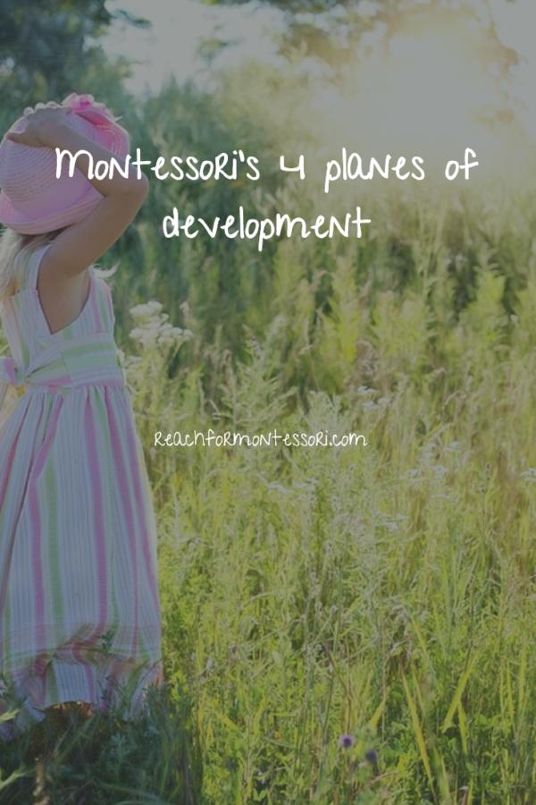 Montessori planes of development pinterest graphic