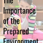 the importance of the prepared environment pinterest graphic.