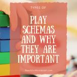 play schemas pinterest image.