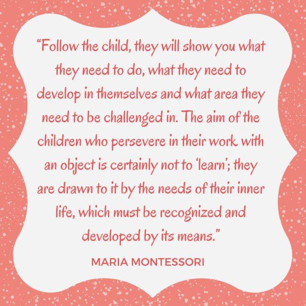 Montessori quote follow the child