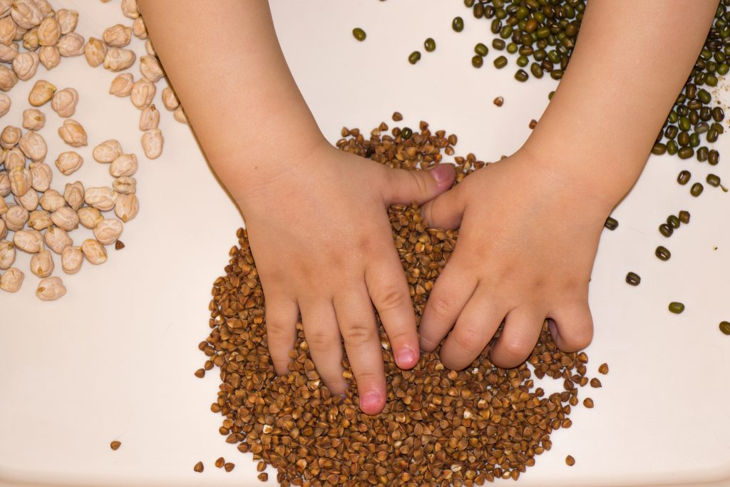 Montessori Activities: A child using their senses by putting hands in different beans, seeds.