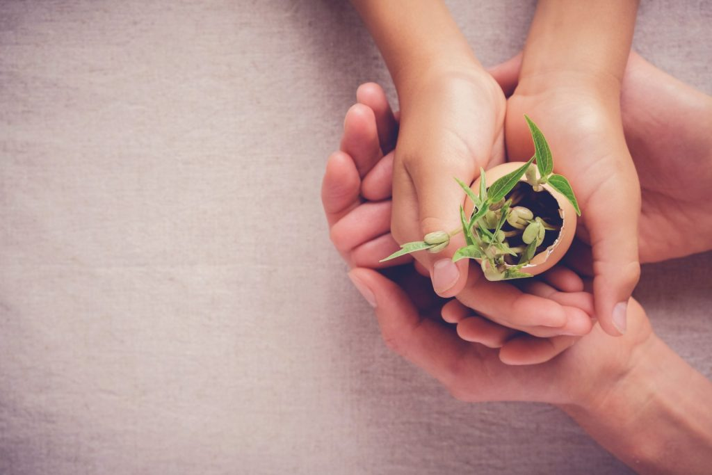 when montessori started, image of child holding small plant budding.