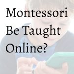 can montessori be taught online? pinterest image.