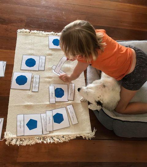 special needs child using  Montessori nomenclature cards