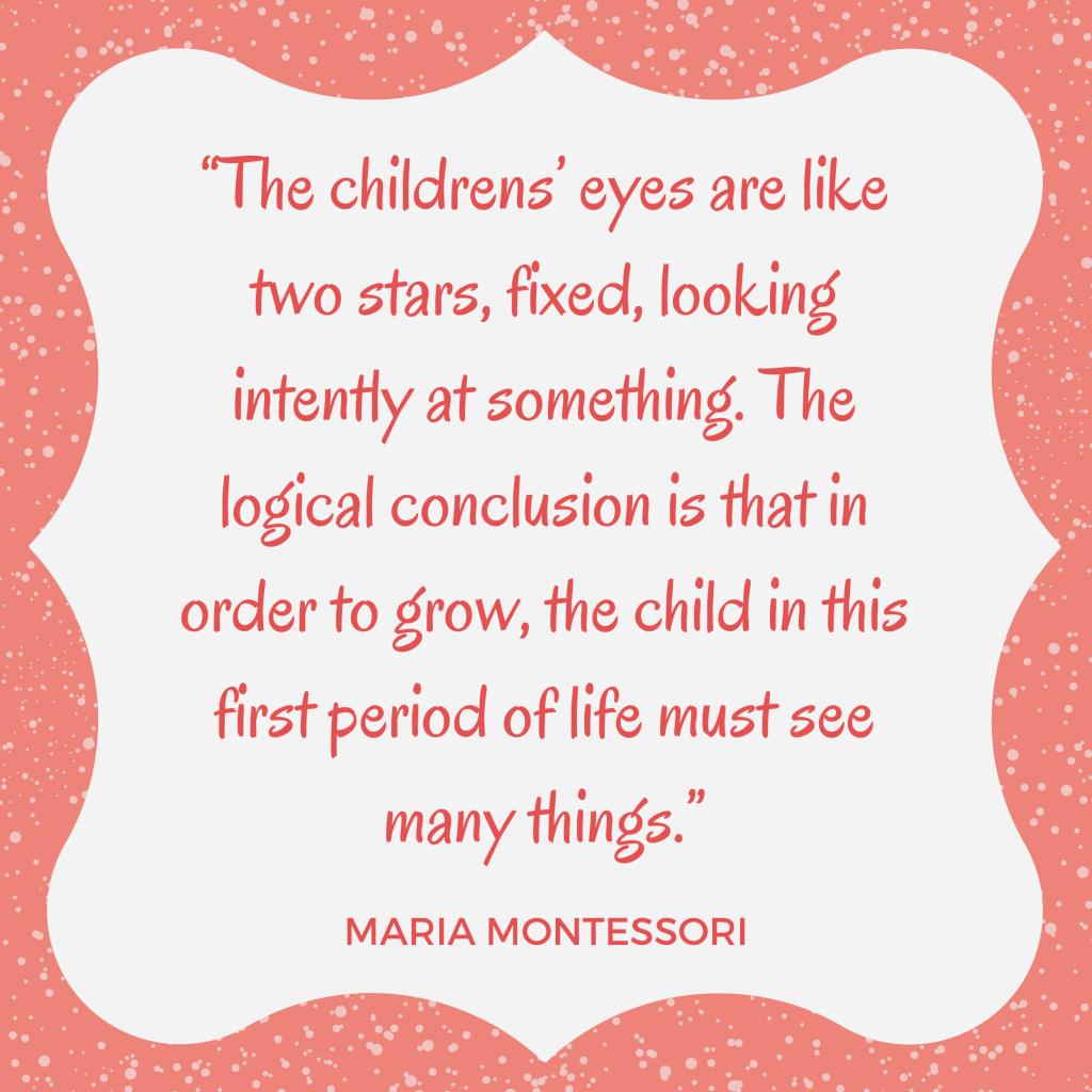 Montessori quote eyesight