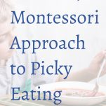 Montessori and Picky Eating Pinterest Graphic.