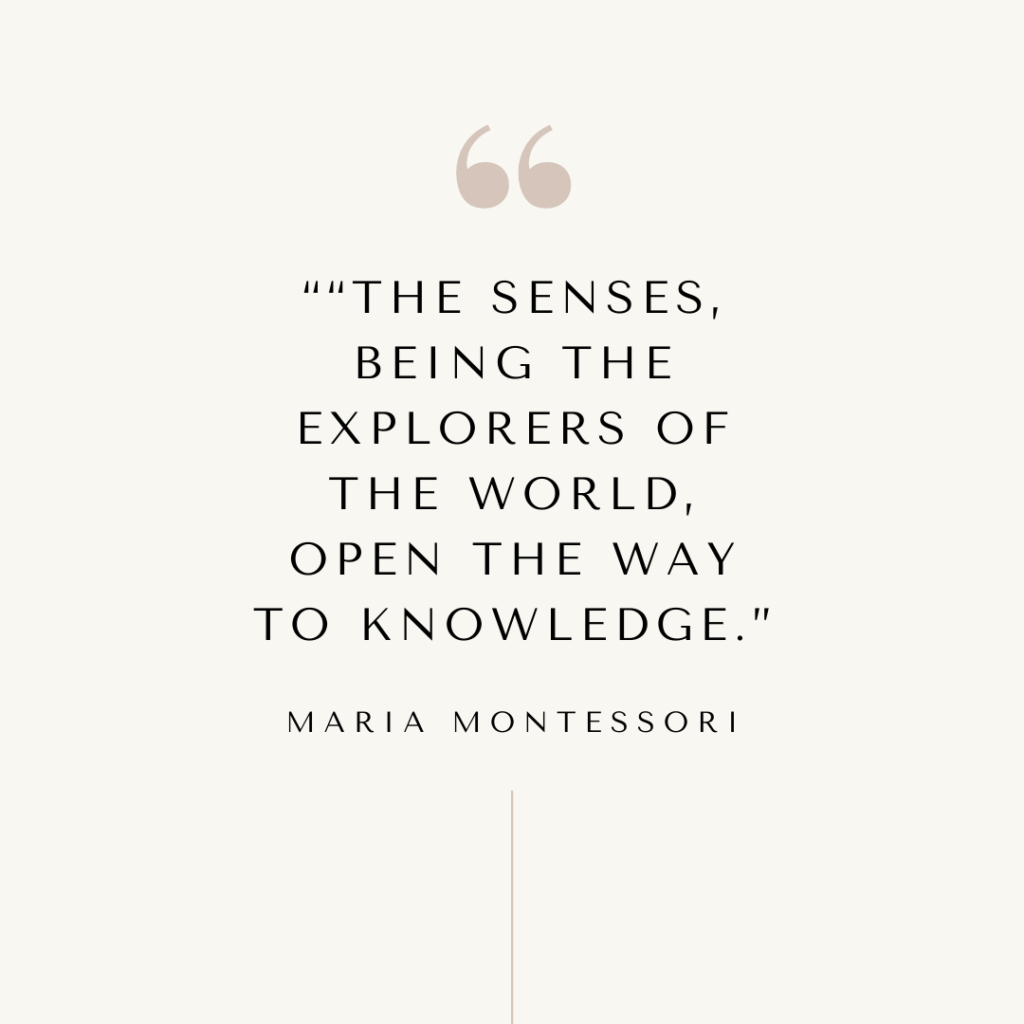 Maria Montessori quote on the senses.