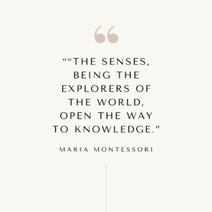 """The sense, being the explorers of the world, open the way to knowledge."" Montessori quote."