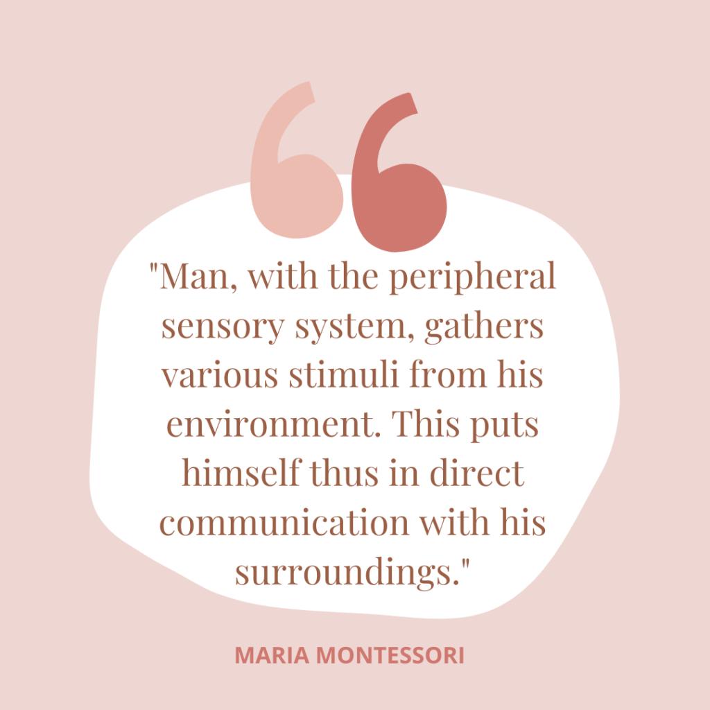 Maria Montessori sensory quote