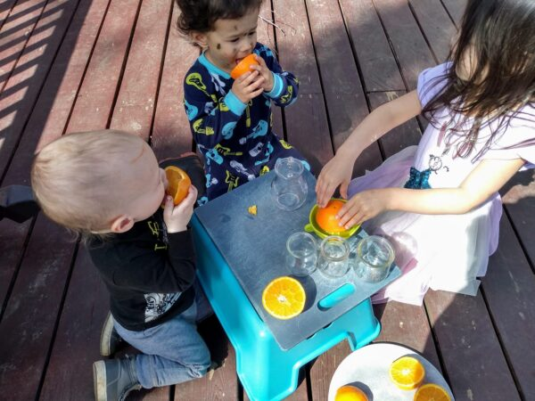 young children outside using hand juicer to make hand squeezed orange juice.