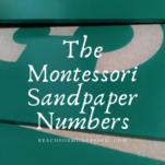 montessori sandpaper numbers pin.