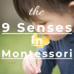 what are the 9 senses in Montessori pin.