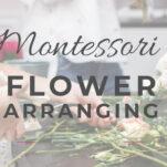 montessori flower arranging pin.