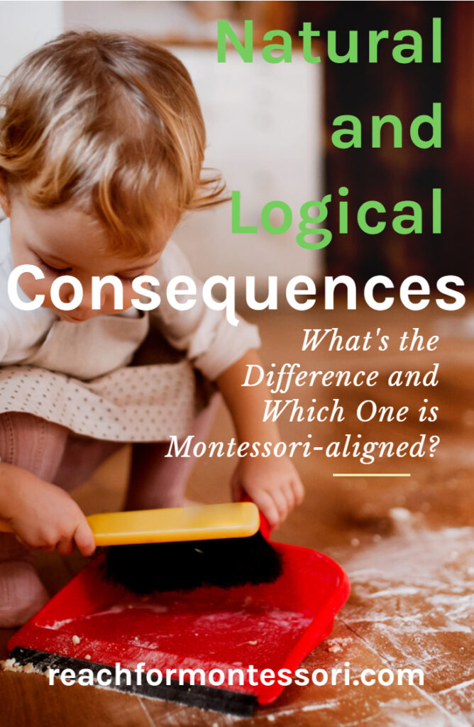 natural and logical consequences pin.