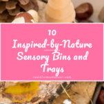 nature sensory bins and trays pin.