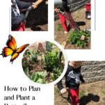 planting a butterfly garden pin.