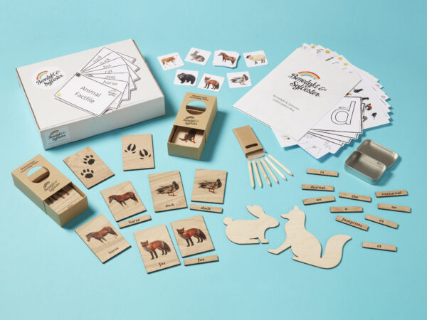 Image of contents of Montessori subscription boxes.