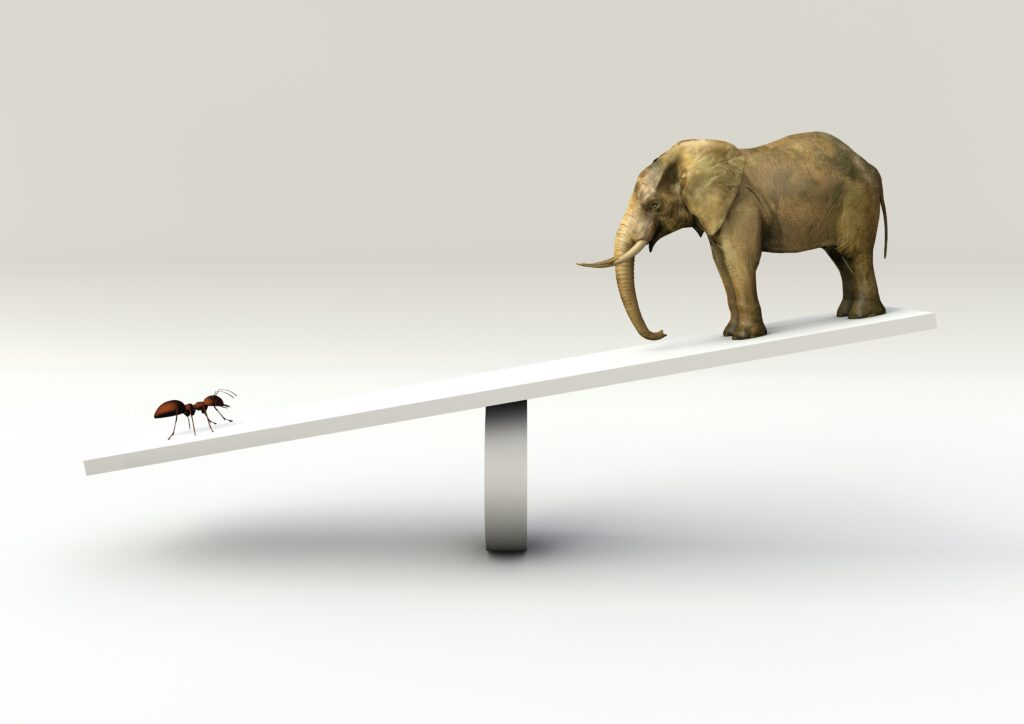 image of ant and elephant on scale, representing weight comparison with the Montessori Baric Tablets.